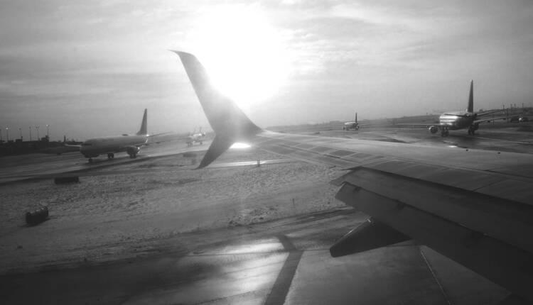 Fuegobelly Plane Grayscale
