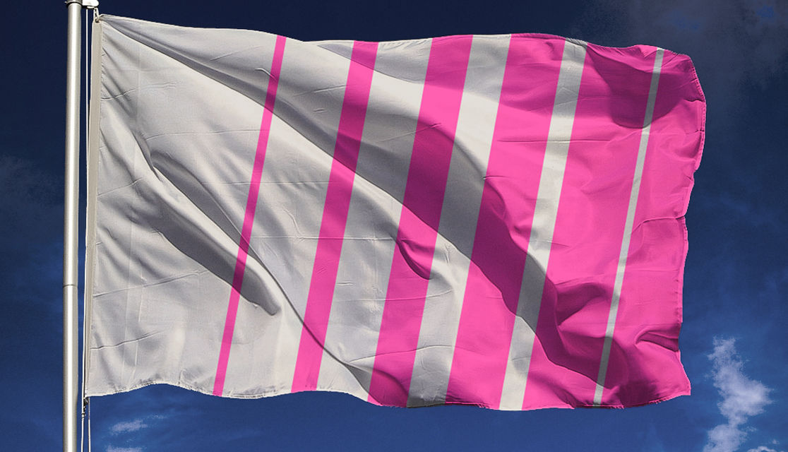 White and pink flag depicting movement with angled thin to thick bars